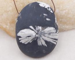 570.5cts natural chrysanthemum fossil gemstone pendant, chrysanthemum fossi