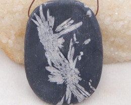 357.5cts natural chrysanthemum fossil gemstone pendant, chrysanthemum fossi
