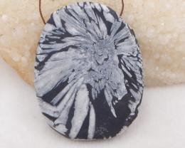 437.5cts natural chrysanthemum fossil gemstone pendant, chrysanthemum fossi