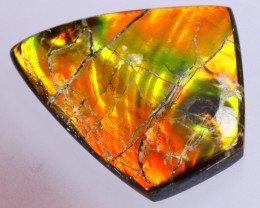 32x29mm,  44.04cts Natural Canadian Ammolite Stone / MA1789