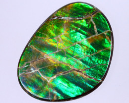 30x23mm,  23.36cts Natural Canadian Ammolite Stone / MA1808