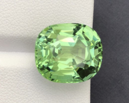 17 ct Majestic Mint Green Master Cut Afghan Tourmaline