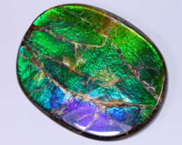 31x24mm,  40.04cts Natural Canadian Ammolite Stone / MA1845