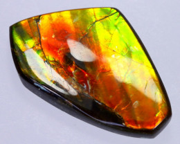 31x20mm,  23.96cts Natural Canadian Ammolite Stone / MA1817