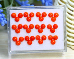 7.05Ct 4mm Natural Untreated Italian Red Coral Lot Box A1936