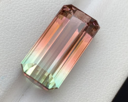 12.60 Carat Bi Color AA GradeTourmaline Gemstone