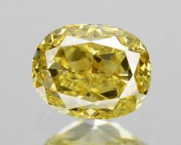 *No Reserve*Diamond 0.18 Cts Untreated Vivid Yellow Color Natural