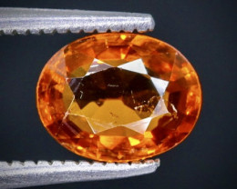1.65 Crt Spessartite Garnet Faceted Gemstone (Rk-8)