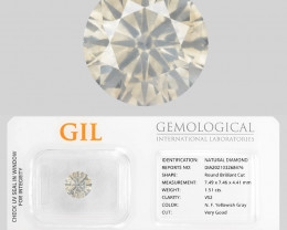 VS2 Diamond 1.51 Cts GIL Certified  Yellowish Grey Color Natural