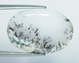 14.92 ct Natural Dendrite Opal Oval Cabochon  Gemstone