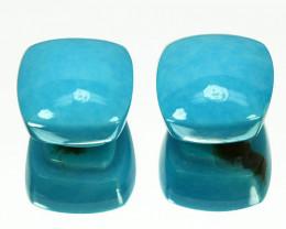 9.98Cts Sleeping Beauty Natural Turquoise Mushroom Cut Arizona Collection G