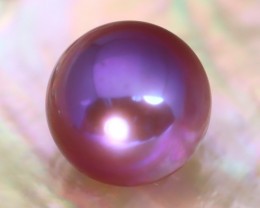 12.7mm 13.47Ct Natural Tahitian Purple Black Pearl AT01