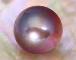 14.1mm 19.98Ct Natural Tahitian Purple Black Pearl AT10