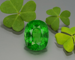 Presenting Biggest Ever Tsavorite  on Gemrock Auction 9.35Ct Collector
