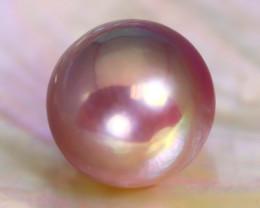 13.5mm 17.42Ct Natural Tahitian Purple Black Pearl B0414
