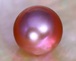 10.7mm 8.93Ct Natural Tahitian Purple Black Pearl C0705