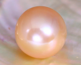 12.1mm 12.52Ct Natural Australian South Sea Orange Color Pearl A0928