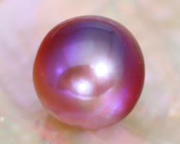 12.6mm 14.16Ct Natural Tahitian Purple Black Pearl B1001