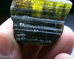 Beautiful Natural color gemmy quality rough Tourmaline Piece 124Cts-A