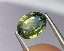 1.72 Cts Certified AAA Rare Bi Color Natural Sapphire