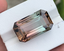 24.79 carat Natural Bi Color Tourmaline.