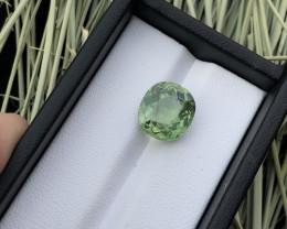 Top Greenish 6.45 ct Apatite Attractive Ring Size