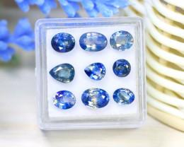 Sapphire 7.60Ct 9Pcs Natural Australian Parti Sapphire Box C1533