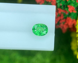 Tsavrite Garnet 0.67 Cts  Vivid Green Step cut BGC1160 | From Tanzania