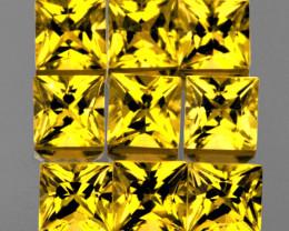 2.60 mm Square Princess Cut 9 pcs 1.41cts Ceylon Yellow Sapphire [VVS]
