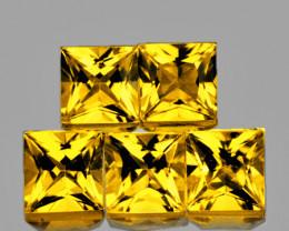 3.20 mm Square Princess 5 pcs 1.31ct Ceylon Yellow Sapphire [VVS]