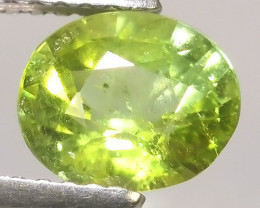 1.05 cts Attractive Natural green Tourmaline Gemstone Oval Shape