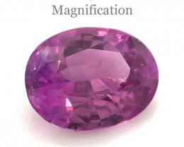 1.51ct Oval Vivid Pink-Purple Sapphire GIA Certified Vietnam