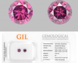 Vivid Purple Pink Diamond 0.45 Cts 2Pcs Rare GIL Ceritifed Fancy