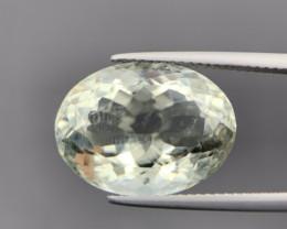 11.40 Cts Excellent Prasiolite/ Green Amethyst. Pra-6979