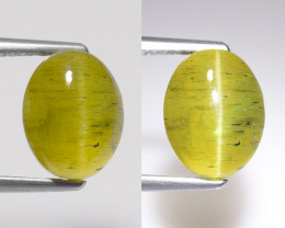 4.21Ct Natural Apatite Cat's Eye Beautiful Gemstone. CE 03