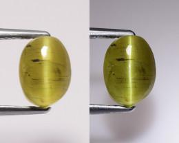2.73Ct Natural Apatite Cat's Eye Beautiful Gemstone. CE 12