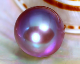 12.5mm 13.80Ct Natural Tahitian Purple Black Pearl C2924