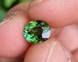 NO TREAT 2.33 CTS TOP QUALITY NATURAL PARROT GREEN TOURMALINE MOZAMBIQUE