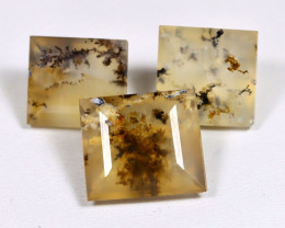 Opal 25.88Ct 3Pcs Natural Scenic Dendrite Opal Faceted Madagascar F3233