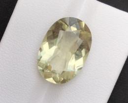 Top Quailty 7.85Carat Natural Green Beryl Gemstone