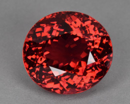 25.82 Cts Natural Gorgeous Red Tourmaline Oval Mozambique