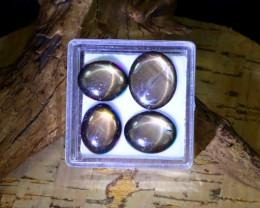 Star Sapphire 16.03Ct Natural Thailand Golden Black Star Sapphire Lot B0374