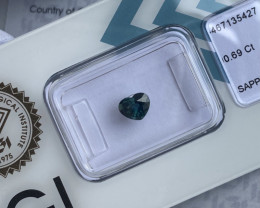 FINE Australian Deep Green Blue UNTREATED Sapphire Heart Cut IGI CERTIFIED