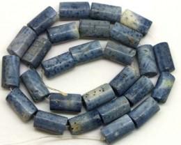 240 CTS BLUE CORAL NATURAL 48 GMS /   TBG-1710
