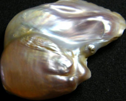 SELECTED LARGE FREEFROM PEARL-TOP QUALITY 69.2 CTS [FP2]
