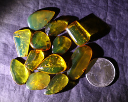 Wholesale lot 12 clear Dominican blue green polished amber Cabochon 13grams