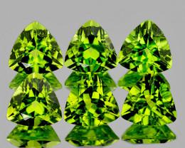 5.00 mm Trillion 6 pcs 2.92cts Green Peridot [VVS]