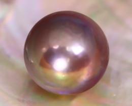 13.4mm 16.84Ct Natural Tahitian Golden Black Pearl A1435