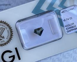 IGI CERTIFIED 0.74ct Colour Change Sapphire Green Blue Purple Fancy Cut UNH