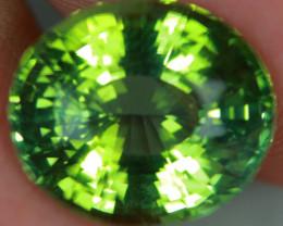 9.71 CT Bright Green Tourmaline Precision Cut and Polished -TSA16